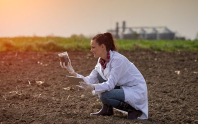 The Different Methods of Soil Testing